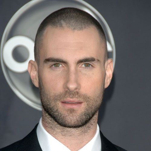 Adam Levine with burr haircut